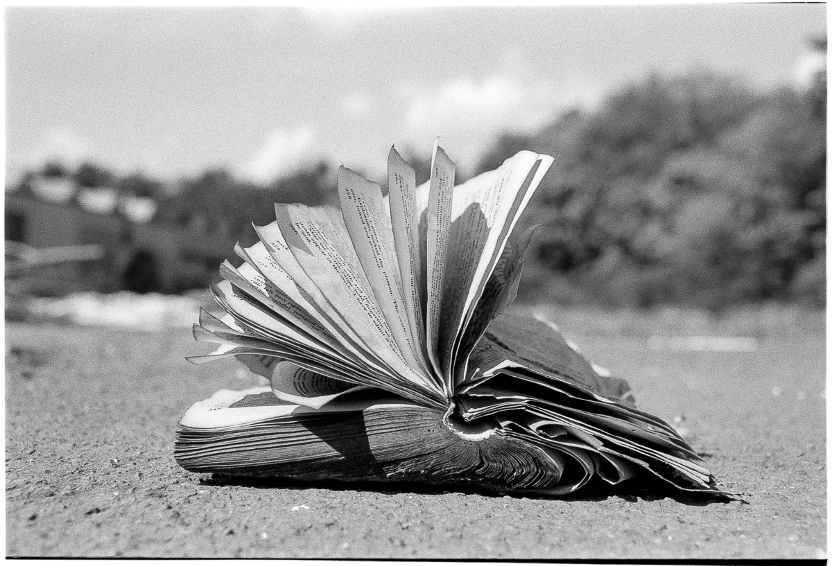 Black and white ground-level view of a tattered, open book, pages fluttering on a breezy sunny day.