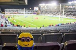 Bob au match de rugby - Blues vs Crusaders