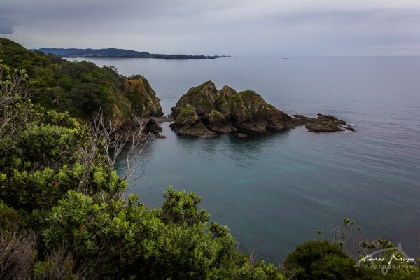 Lookout Whale Bay