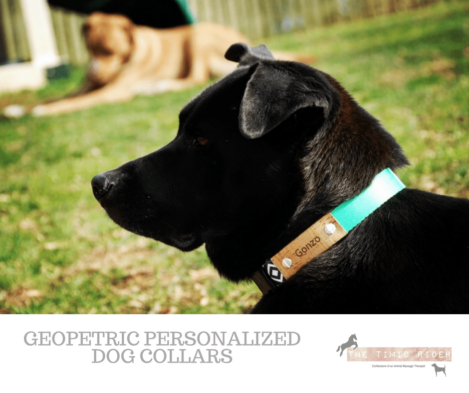 Personalized Dog Collars by Geopetric