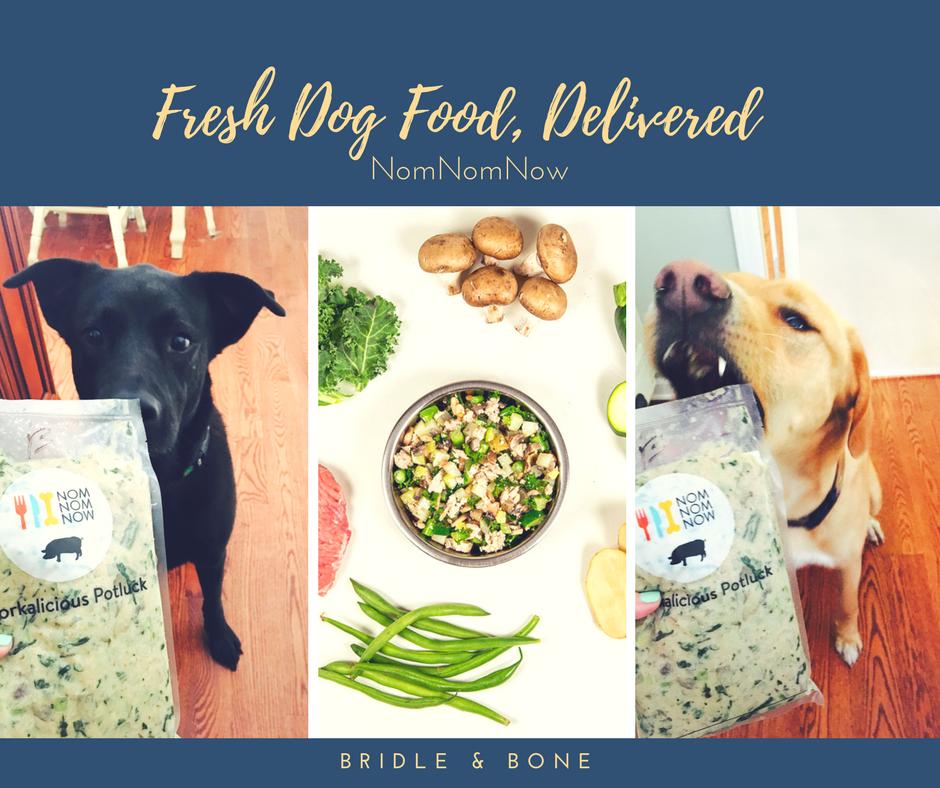 Fresh dog food with NomNomNow
