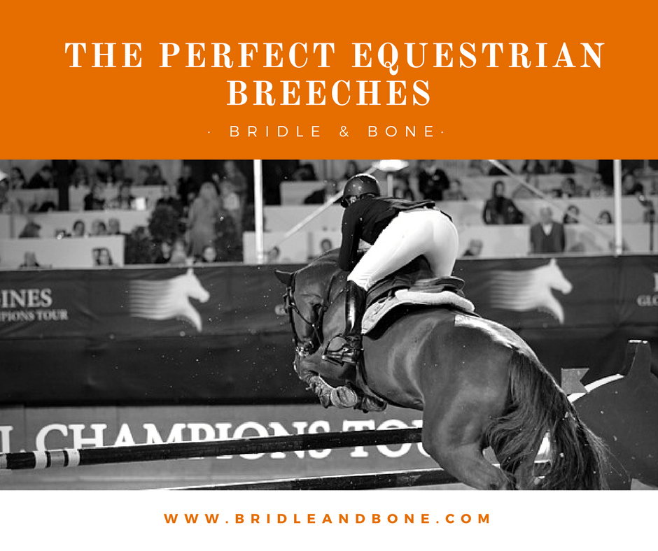 In Search of the Perfect Equestrian Breeches