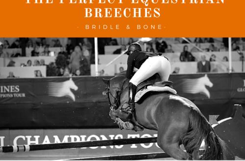 Perfect Equestrian Breeches