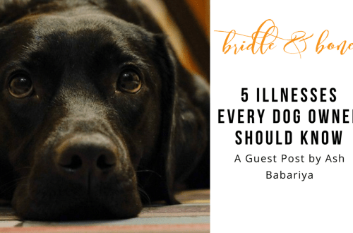 5 Illnesses Every Dog Owner Should Know