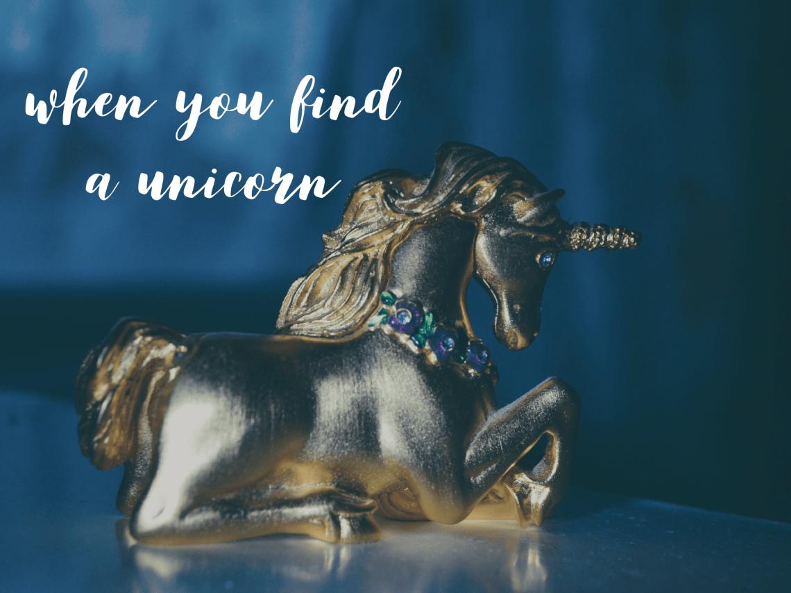Unicorn Bridle & Bone