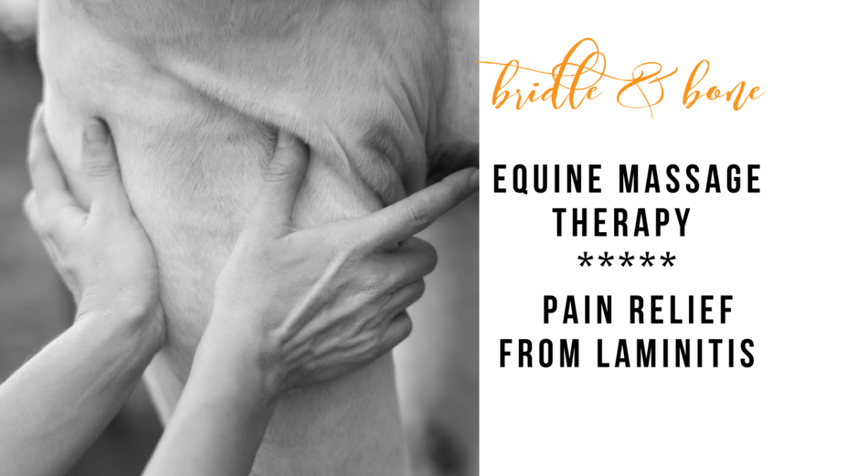 Providing Laminitis Pain Relief with Equine Massage Therapy