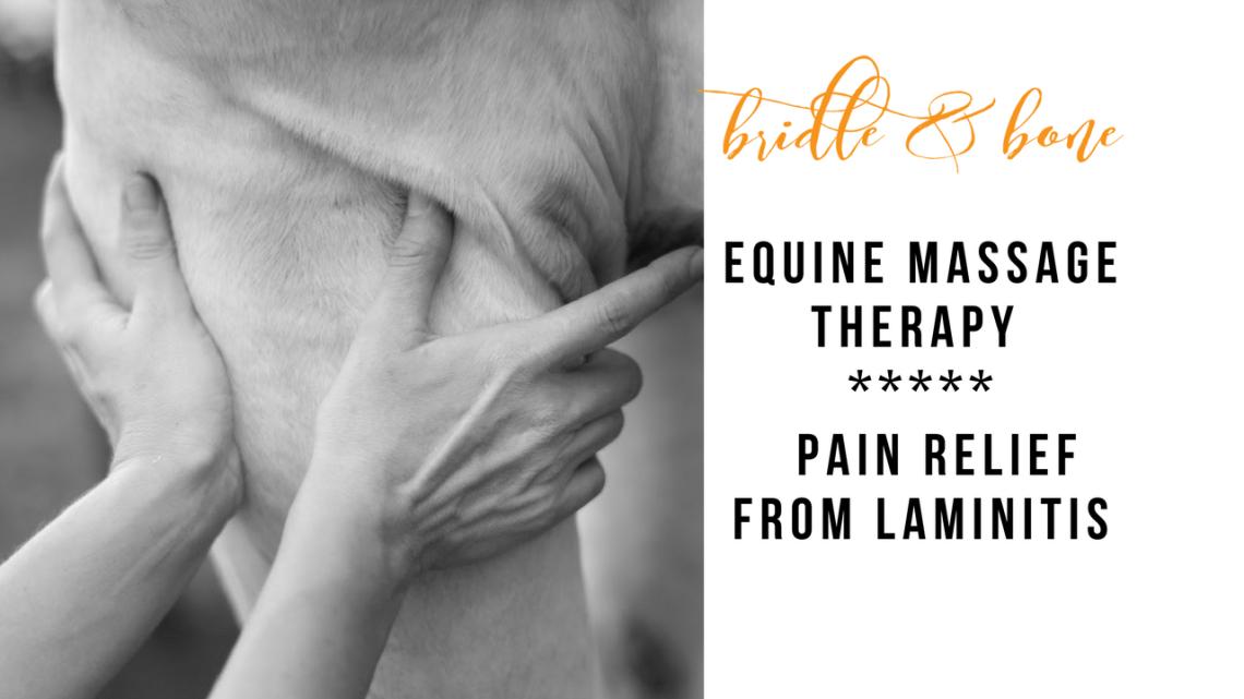 lamintis pain equine massage