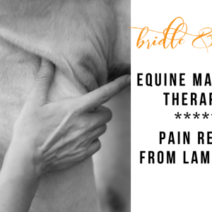 lamintis pain equine massage