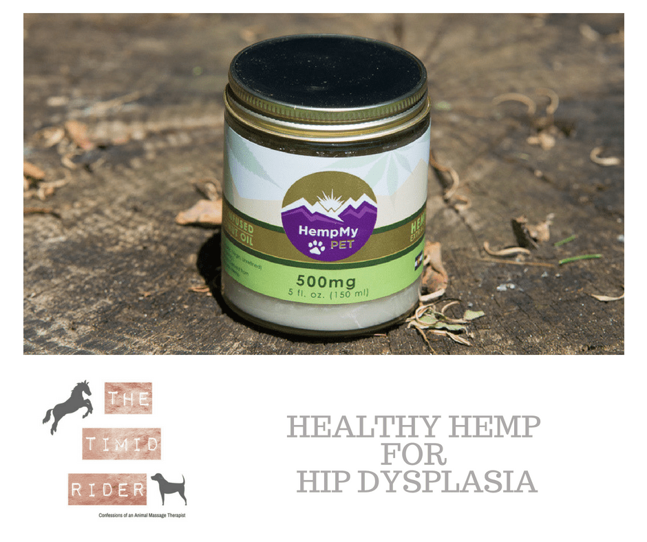Healthy Hemp for Hip Dysplasia