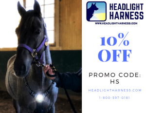 Headlight Harness for Horses