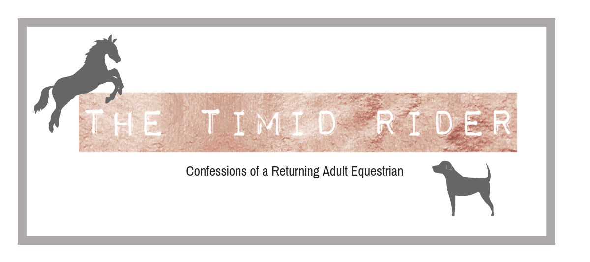 The Timid Rider