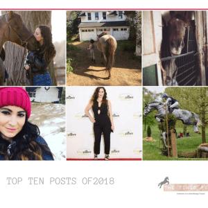 Timid Rider Top 10 2018