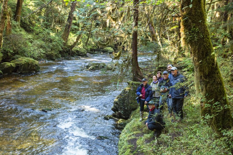 Tourists by a creek in the Great Bear Rainforest