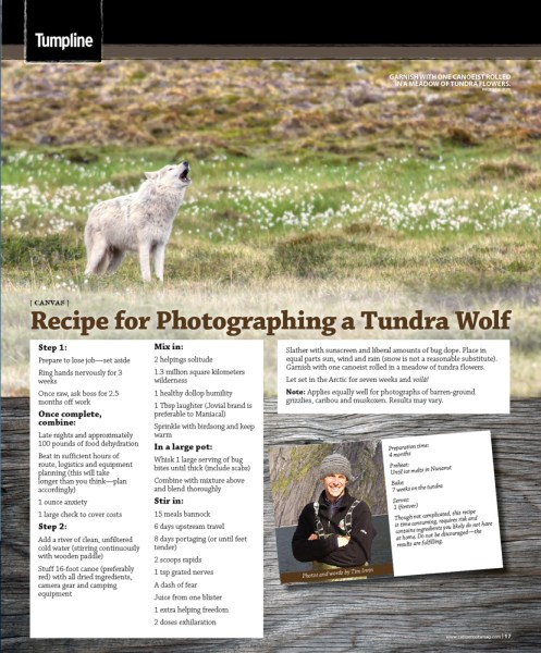Recipe for a wolf photograph by Tim Irvin