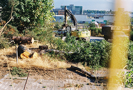 stump-onni-bulldozer