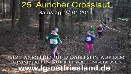 25. Auricher Crosslauf 2018