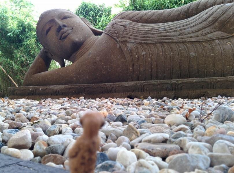 Erdmännchen vor einer Skulptur