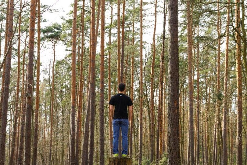 Ein Mann steht auf einem Baumstamm