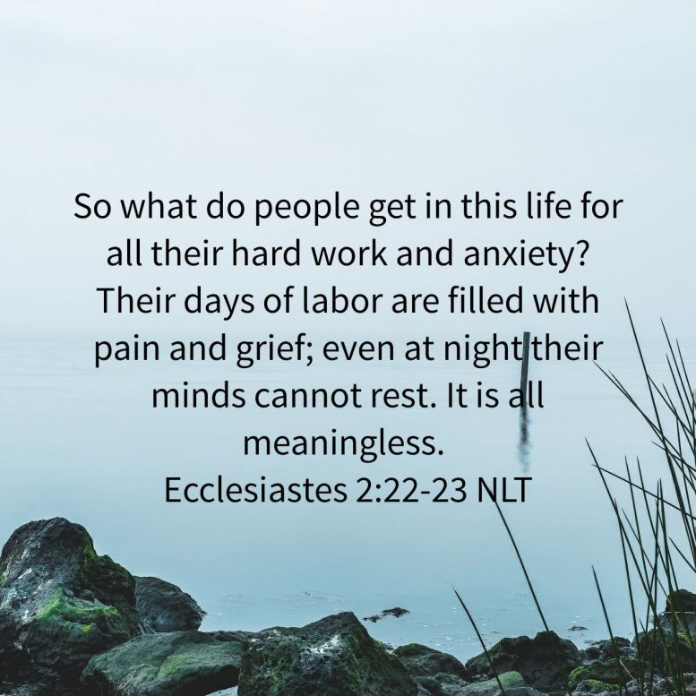 So what do people get in this life for all their hard work and anxiety? Their days of labor are filled with pain and grief; even at night their minds cannot rest. It is all meaningless. - Ecclesiastes 2:22‭-‬23 NLT