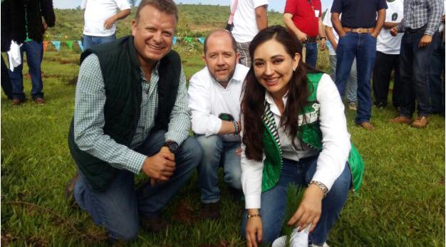 Participa Michoacán en campaña nacional de reforestación