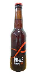 Birra PLURALE HONEY ALE