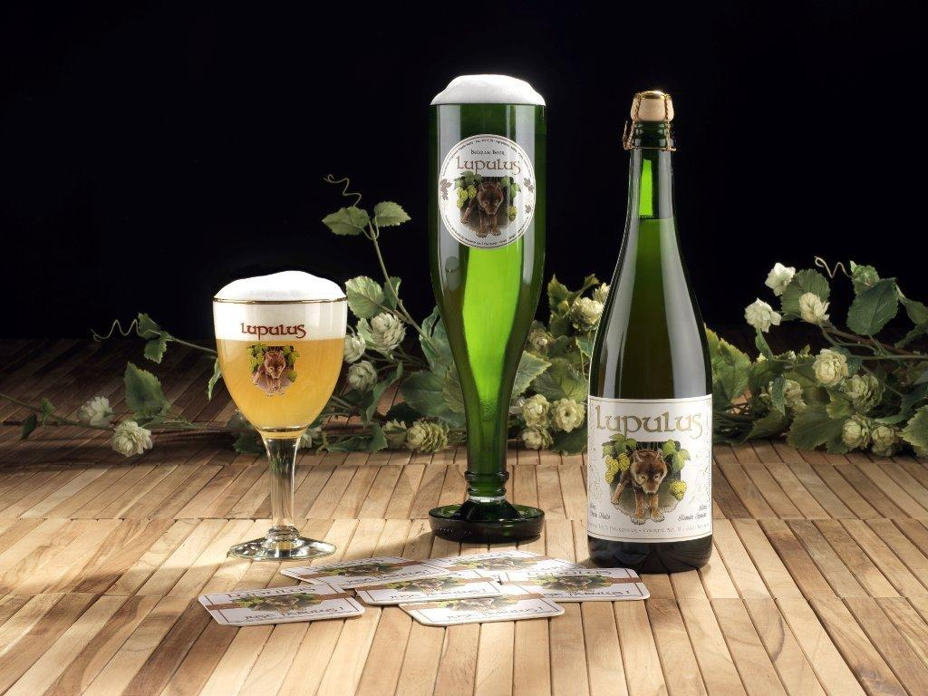 Lupulus Organicus e Lupulus Hibernatus: dal Belgio le novità della Brasserie Les 3 Fourquets