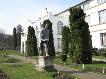 Cluj Botanica 2016 (3)