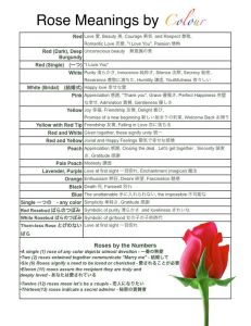 Rose Meanings
