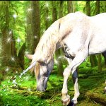 Forest-Unicorn-magical-creatures-34131207-1280-800