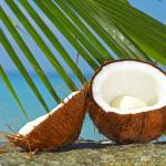 Tropical-Coconut-Pulp-Law-Powder