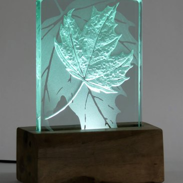 Illuminated Leaf Light