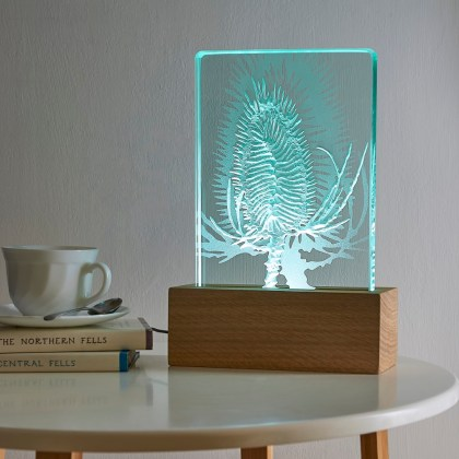 Engraved sandblasted teasel on glass oak wood table light with LED lighting by Tim Carter