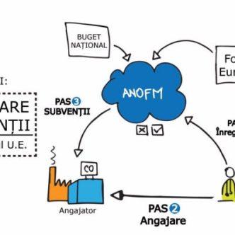 anofm-3-guvern