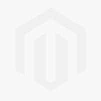 A Guide to Attachment
