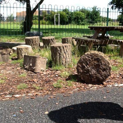 stumps - Copy