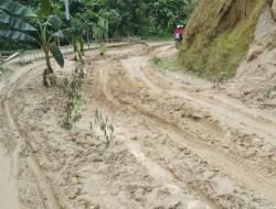 Tito Vilanova: Semoga Jalan Poros Kecamatan Bambang Segera Diperbaiki