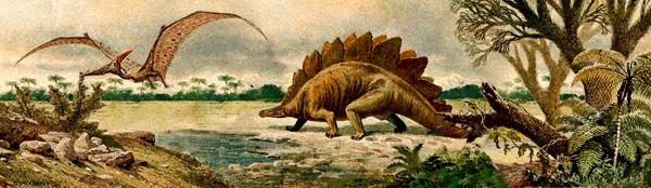 Dinosaur Diorama Background