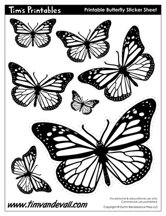 It's just a photo of Crazy Butterfly Cut Out Printable