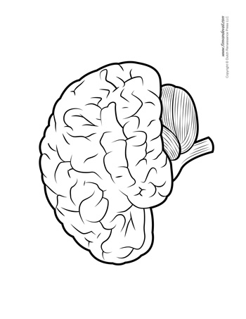 Brain Diagram - Blank - BW - Tim's Printables