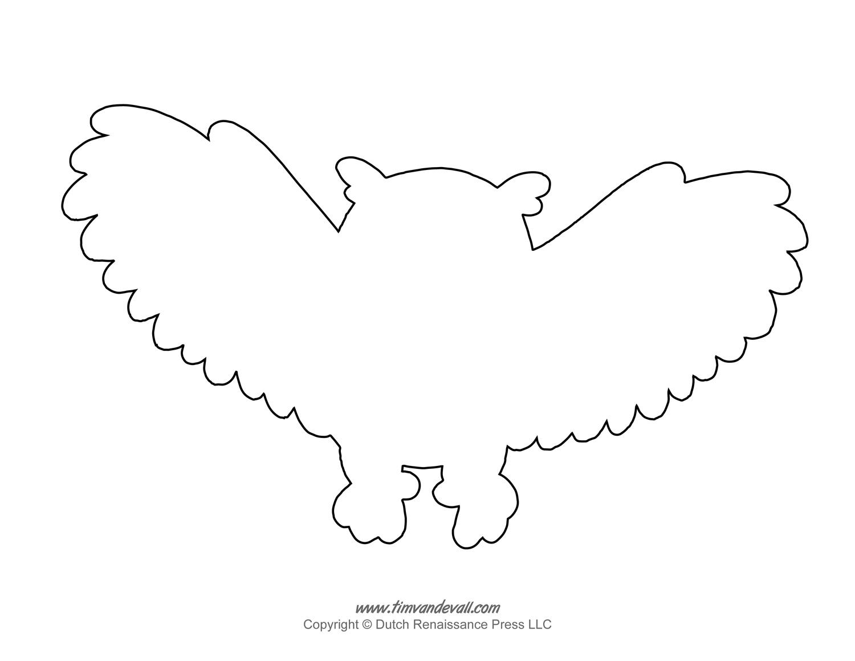 Owl Outline