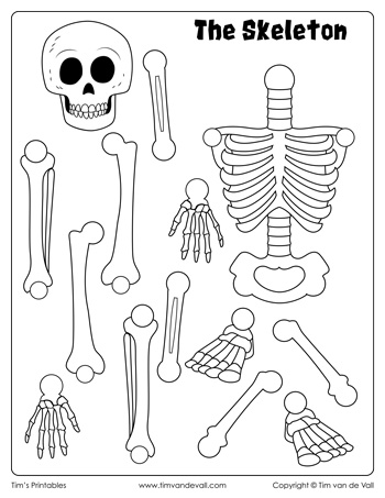 skeleton-cut-and-paste
