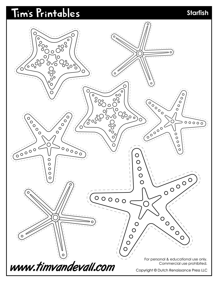 Starfish Template Sea Star Templates