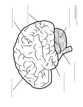 Image Result For Grade 6 Math