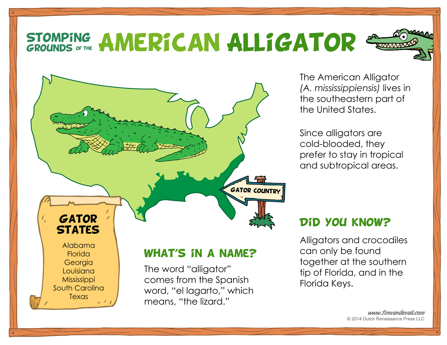 Where Do Alligators Live