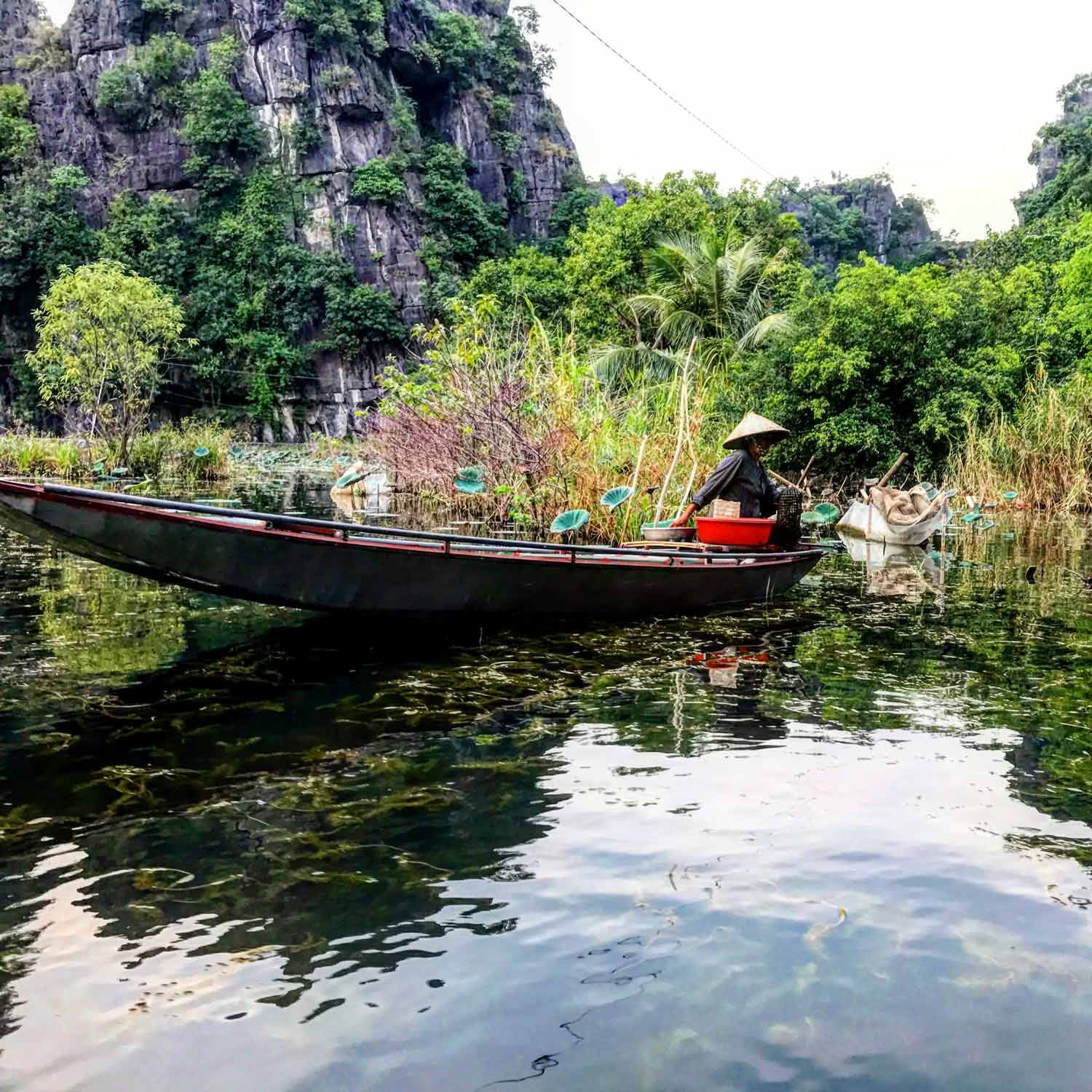 Tam Coc Fishing Lady
