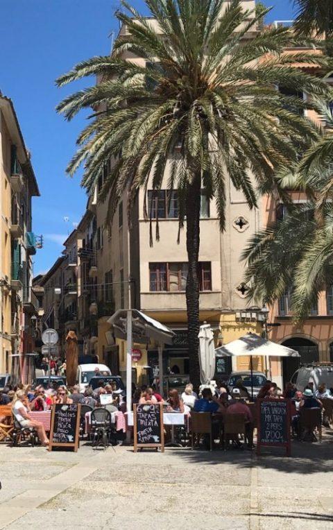 Palma och shopping