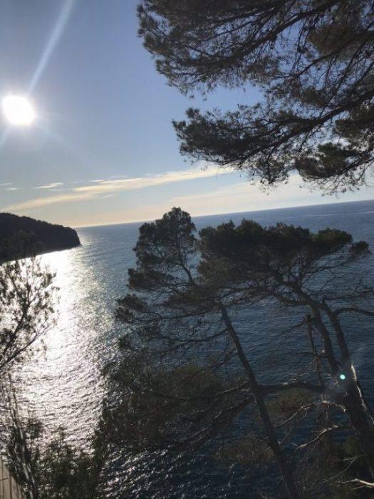 Mallorca och Corona