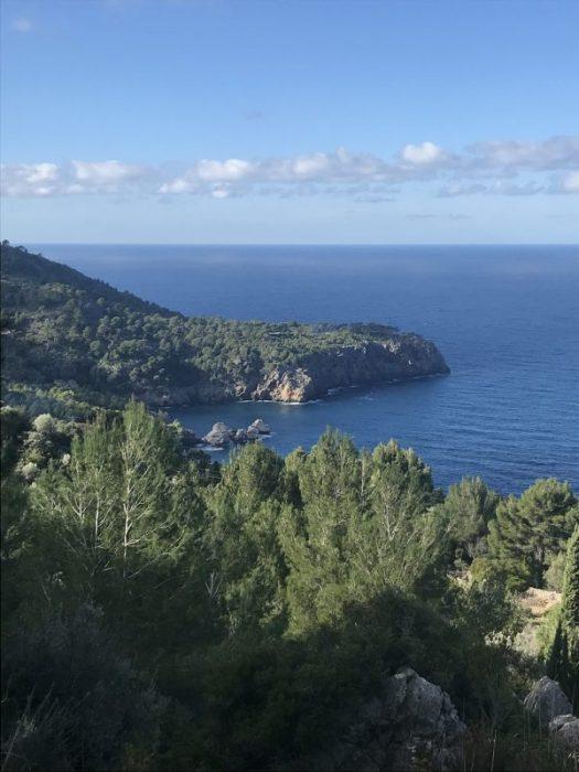 1 februari på Mallorca
