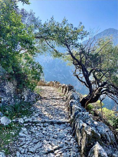 Det ensamma Mallorcalivet