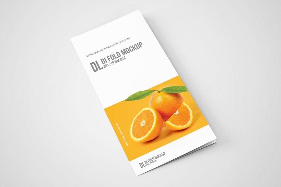 dl bi fold brochure mockup
